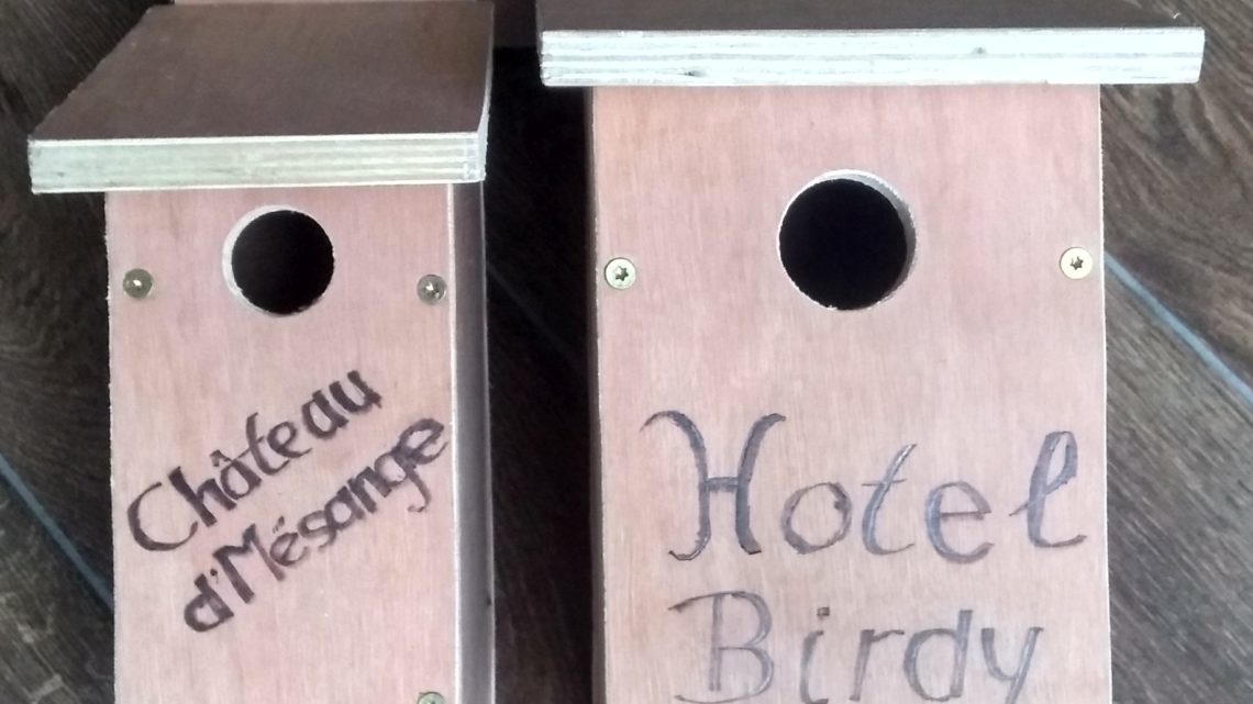 DIY Vogelhuis