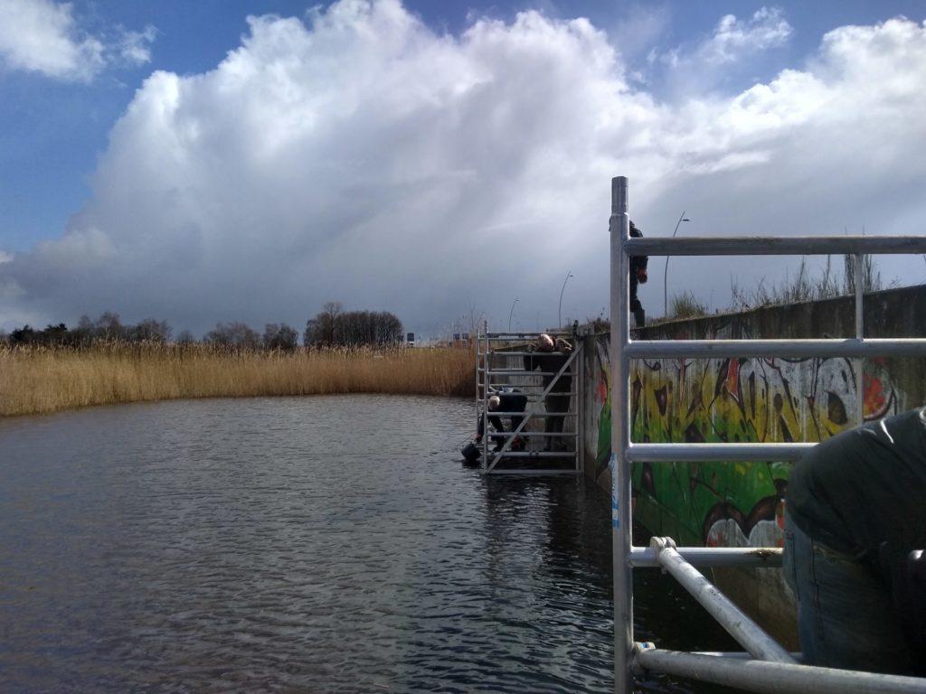 Onderhoud zwaluwen wand op de steigers boven het water.